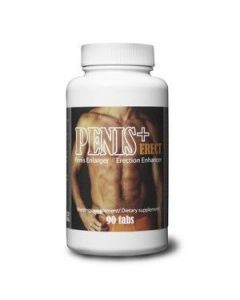 Penis + Erect
